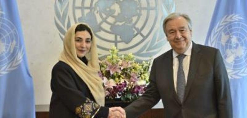 هماهنگ کننده سازمان ملل برای مبارزه با کرونا مشخص شد